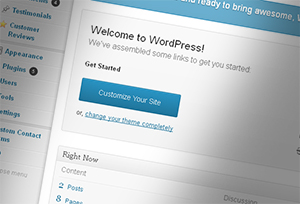 Wordpress Admin Screen