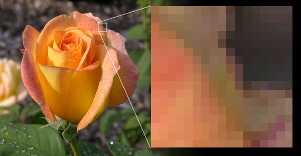Example of bitmap image with enlargement