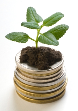plant growing out of coins shows good investment of marketing budget